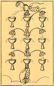 10-cups013.jpg