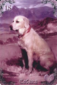 Dog-Liliac Twilight
