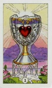 Robin Wood Ace of Cups